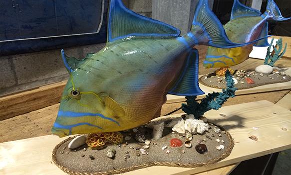 Custom fish mount creations for Global fish mounts