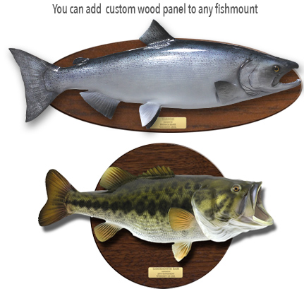 Fish mounts official page freshwater fish mounts for Global fish mounts